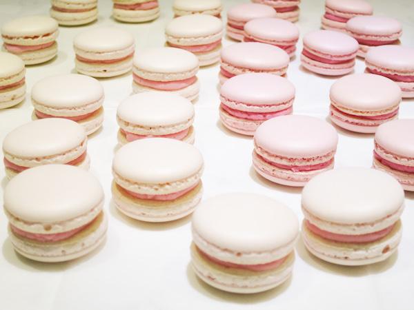Rose Raspberry & Cherry Chocolate Macarons